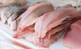 tonno e pesce